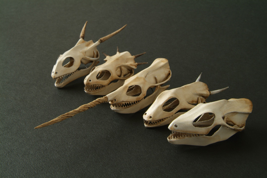 「The Skulls Collection」